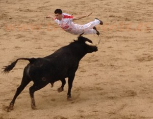 Concurso de Cortes - Fiestas Toro Enmaromado 2012