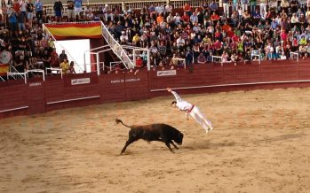 PACMA pedirá en el Congreso que los toros no tengan rebaja de IVA
