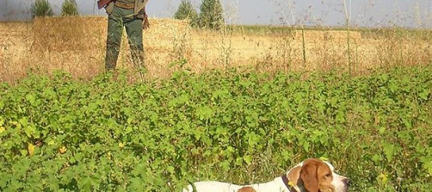 Inicio de la media veda de caza con un aumento de 17 a 20 días hábiles