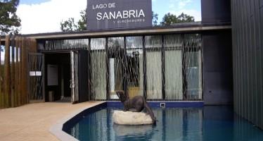 El Lago de Sanabria recibió un 7% más de visitantes en 2015