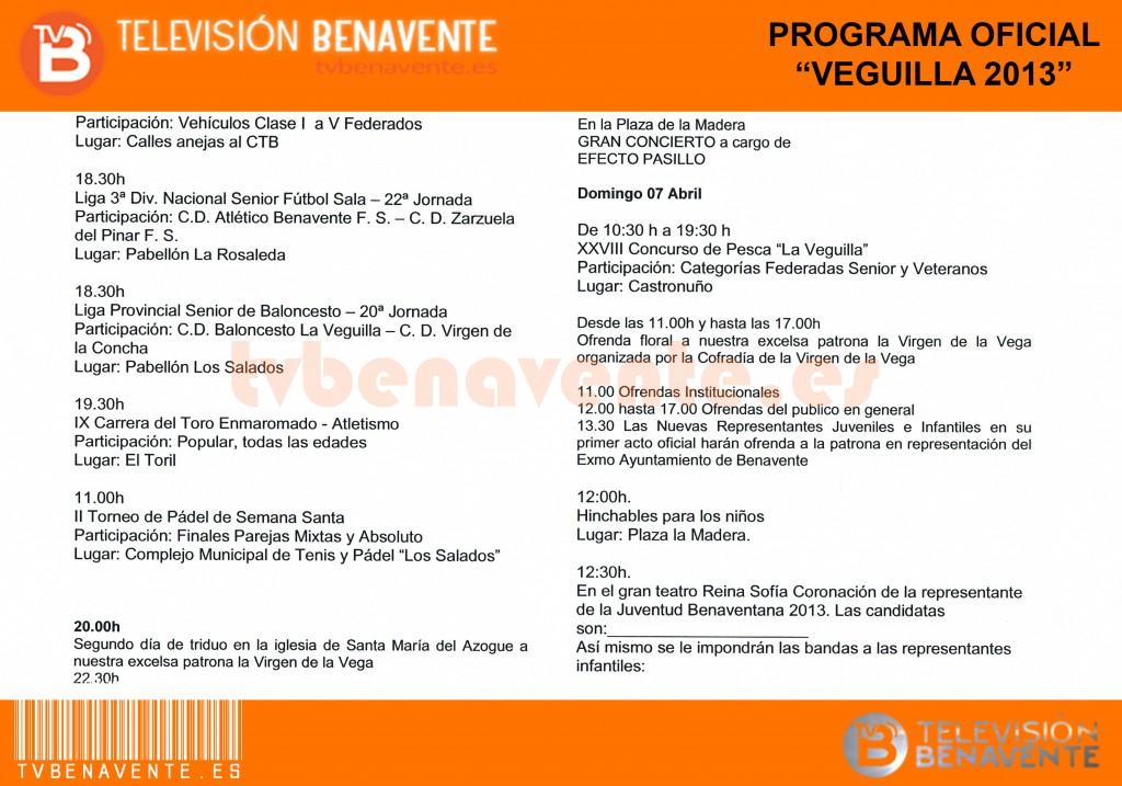 programa_veguilla_2013_1