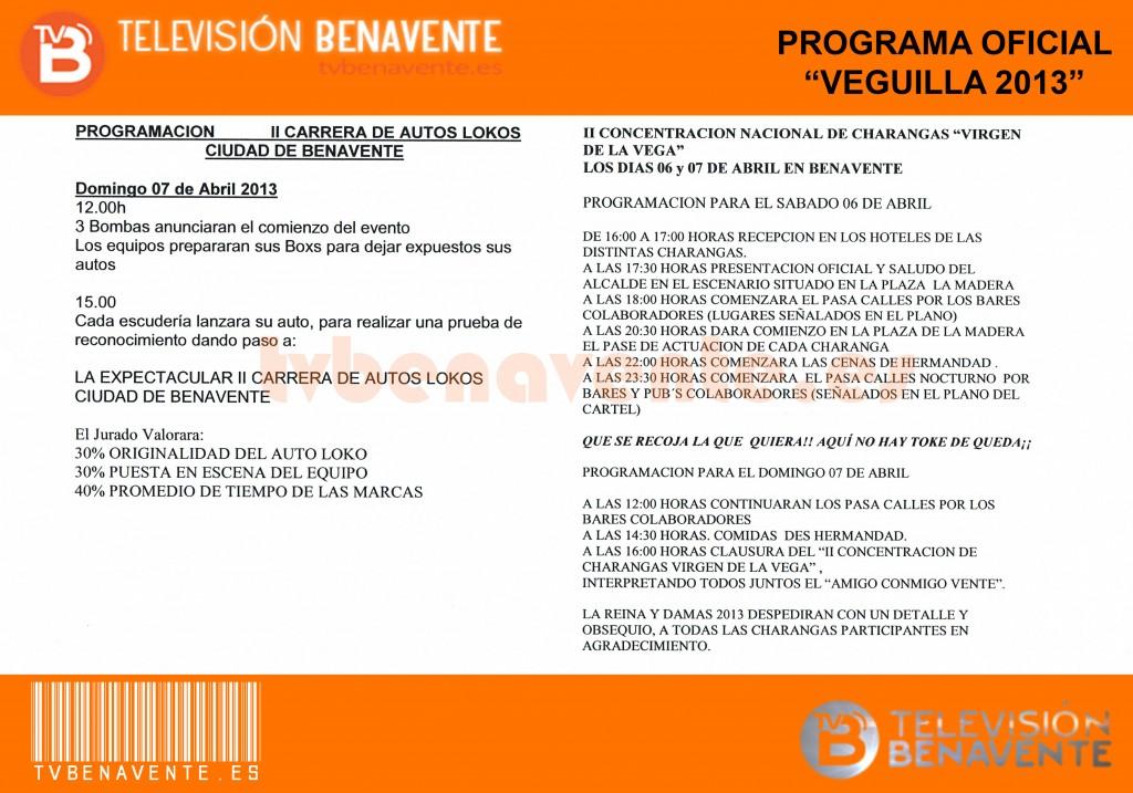programa_veguilla_2013_4