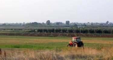 ENCUESTAS SOBRE LA ESTRUCTURA DE LAS EXPLOTACIONES AGRARIAS EN 2013