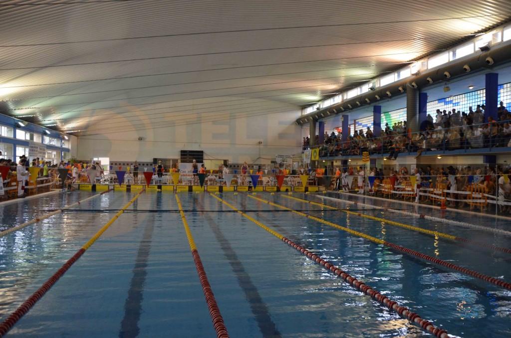 El club salvamento benavente subcamp on de espa a en for Piscina don benito