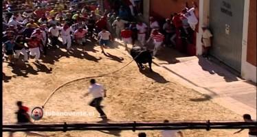 VIDEO: SALIDA DEL TORIL DE BONARILLO, TORO ENMAROMADO 2014 DE BENAVENTE
