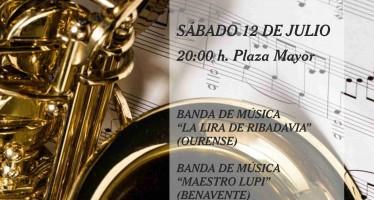 """XII Encuentro de Bandas de Música """"Ciudad de Benavente"""""""