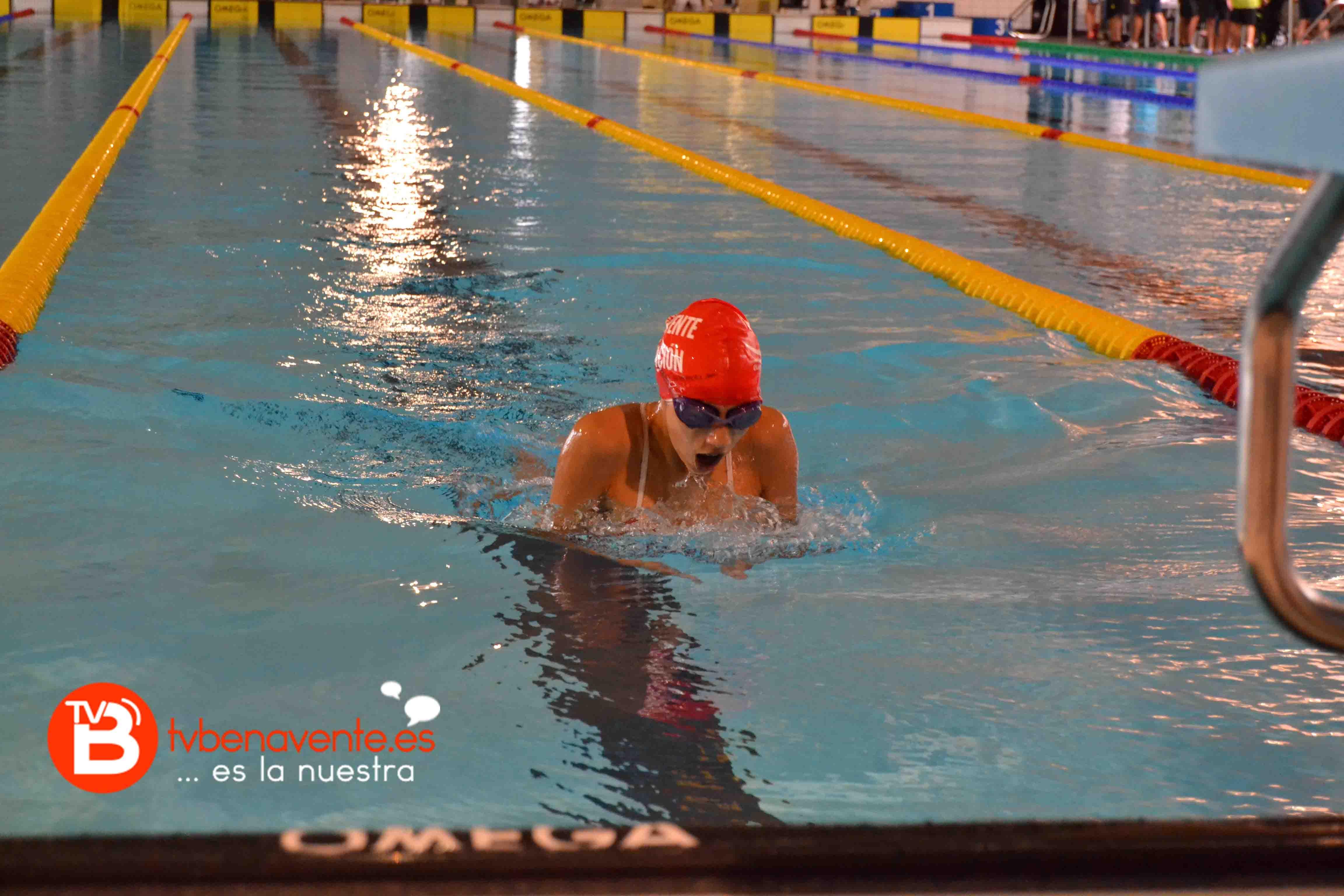 El benavente nataci n finaliza la temporada con grandes for Piscina rio esgueva