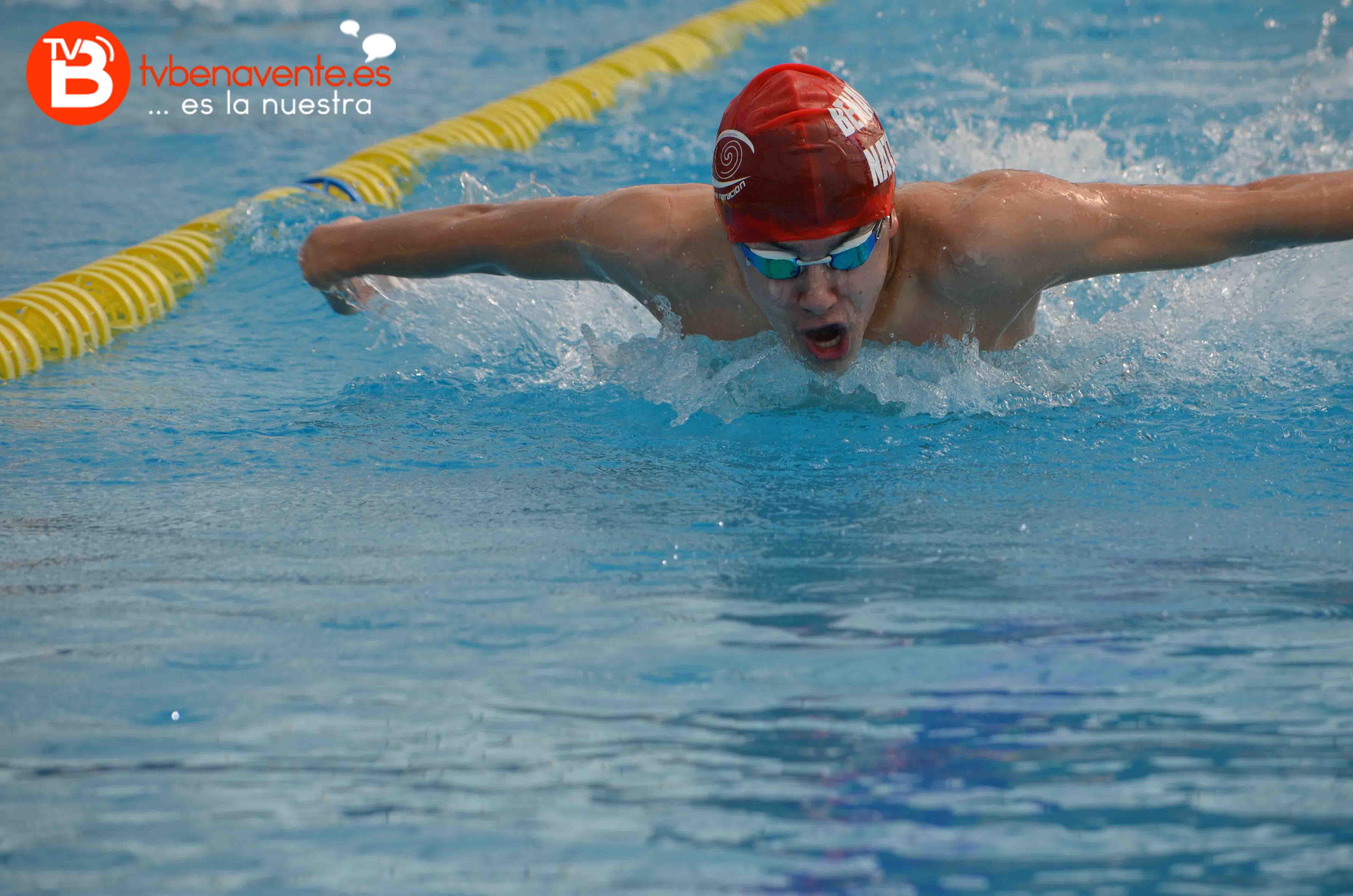 El benavente nataci n arrasa en su trofeo televisi n for Piscinas benavente