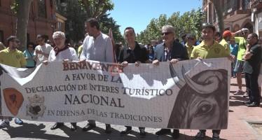Alrededor de 500 personas se manifestaban a favor de la declaración nacional de las fiestas del Toro Enmaromado