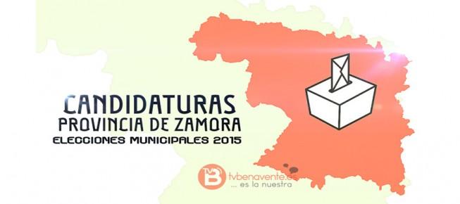 elecciones municipales zamora 2015