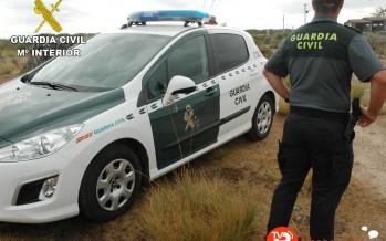 Detenido un hombre por matar a su mastín tras atarlo a su coche