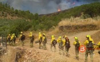 Izquierda Unida presentará una moción para reconocer a las Brigadas de Refuerzo de Incendios Forestales