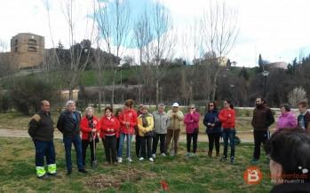Celebración en la jornada de hoy del Día Internacional de los Bosques en Benavente