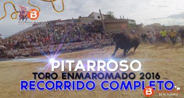 VIDEO: Recorrido COMPLETO de Pitarroso Toro Enmaromado 2016 de Benavente