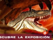 CONCURSO ENTRADAS – DINO EXPO XXL 2016