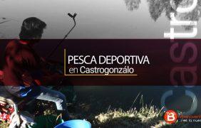 VIDEO REPORTAJE: Pesca Deportiva en Castrogonzálo