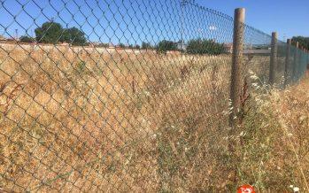 El Ayuntamiento d Benavente habilitará 40 huertos urbanos
