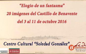 Ledo del Pozo expondrá 20 imágenes del Castillo de Benavente