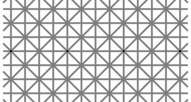 ¿Eres capaz de ver los doce puntos negros de esta imagen?