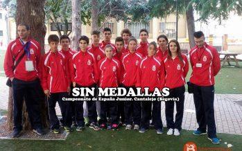 El taekwondo de Castilla y León se queda sin medallas en Cantalejo