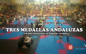 Más medallas para los taekwondistas benaventanos