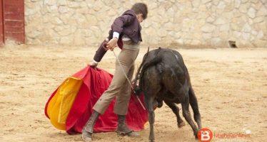 """La Asociación Cultural """"Foro Taurino de Zamora"""" convoca el VI Bolsín Tierras de Zamora"""