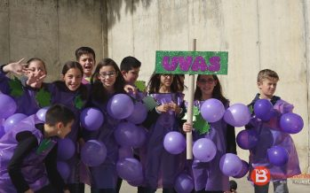 """GALERÍA: El Carnaval de las frutas llega al Colegio """"El Pinar"""""""