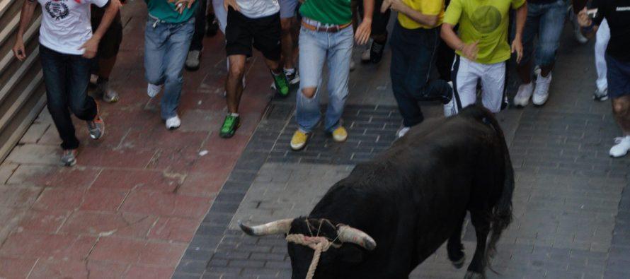 La Calle Herreros a la espera de formar parte del recorrido del Toro Enmaromado 2017