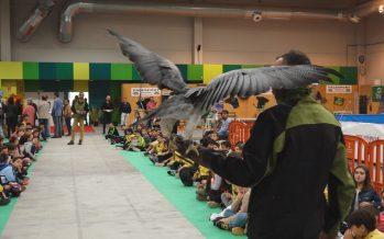 GALERÍA: Primeras visitas a la Feria de Caza y Pesca en Benavente