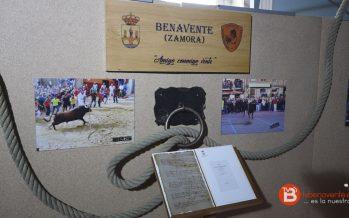 Inaugurado el Museo Itinerante del Toro con Cuerda en Benavente
