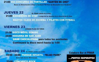 XIV Jornadas de Ocio al Aire Libre por la Asociación de vecinos de El Pinar