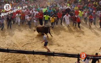 La grada para ver la salida del Toro Enmaromado costará 5 euros por día