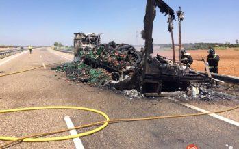 Un trailer cargado de carne se calcina en la A-66 cortando la autovía