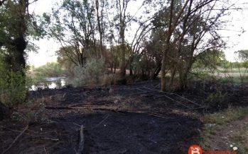 Incendio en la zona del Sequedal que afectó a un caseto de aperos
