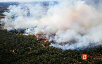 Un gran incendio forestal arrasa hectáreas en Vega de Tera