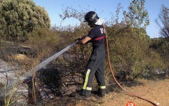 Incendio de cereal y monte entre Quiruelas y Morales del Rey