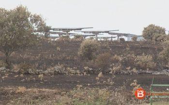 Pino del Oro y Fonfría pedirán apoyo para paliar los daños del fuego