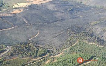 Rebajado a nivel 0 el incendio de San Martín del Pedroso
