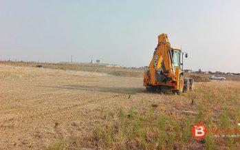 La planta procesadora de pistacho de Villalpando creará empleos fijos